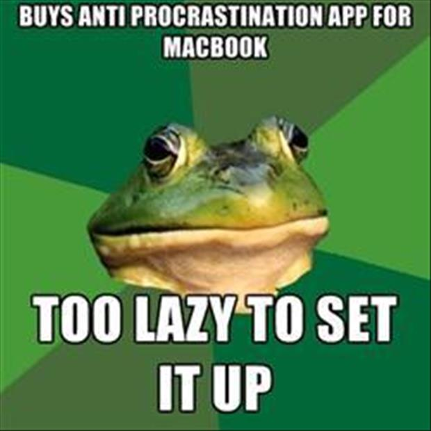 bachelor frog meme funny pictures, dumpaday (4)