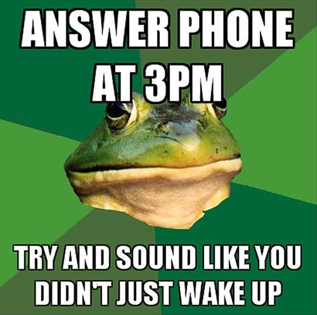 bachelor frog meme funny pictures, dumpaday (5)