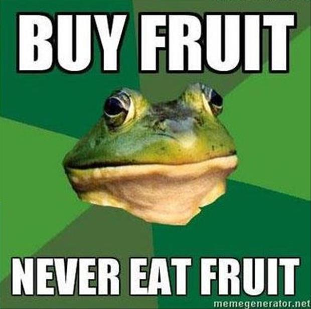 bachelor frog meme funny pictures, dumpaday (6)