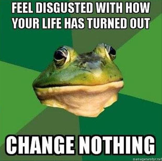 bachelor frog meme funny pictures, dumpaday (7)