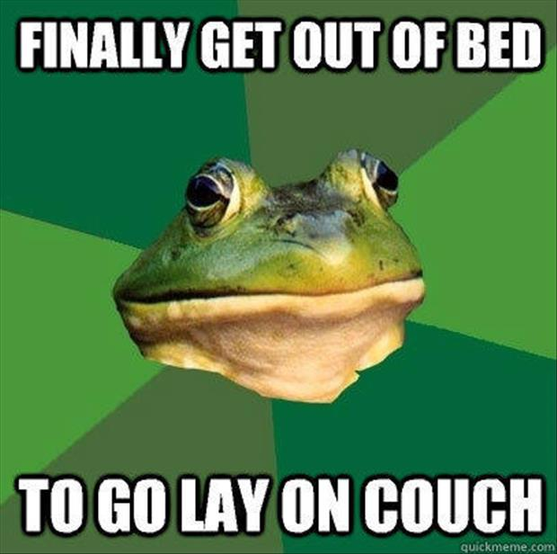 bachelor frog meme funny pictures, dumpaday (8)