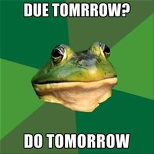 bachelor frog meme funny pictures, dumpaday (9)