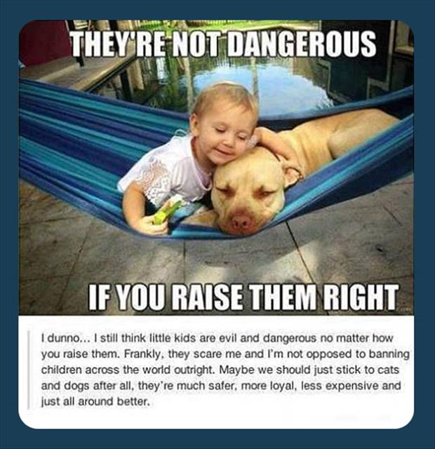 dangerous dogs funny quotes