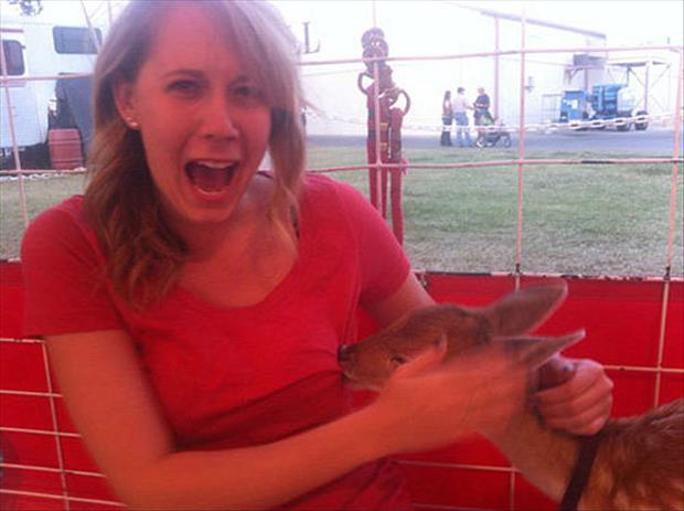 deer breast feeding