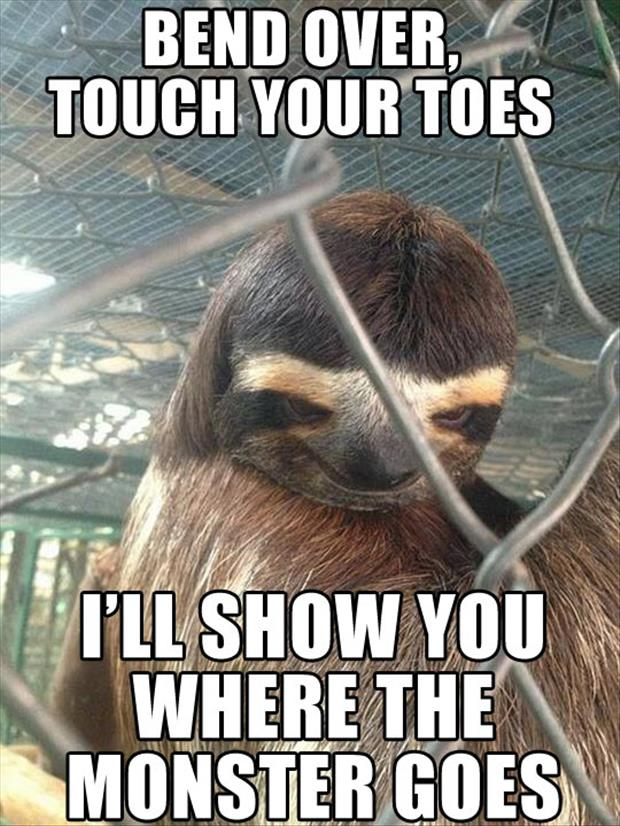 Dirty sloth pictures - photo#27