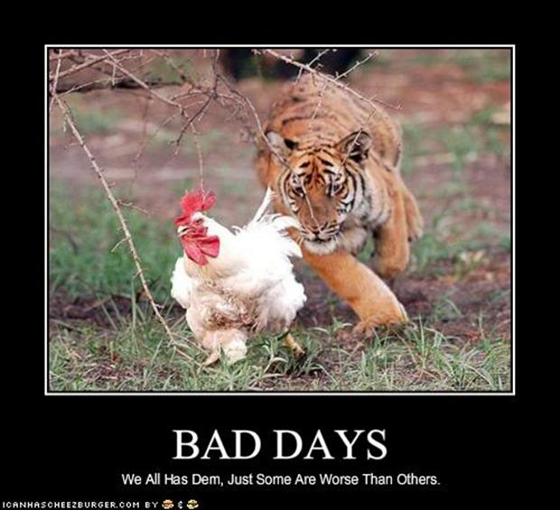 Funny Memes For Having A Bad Day : Funny quotes about having a bad day quotesgram