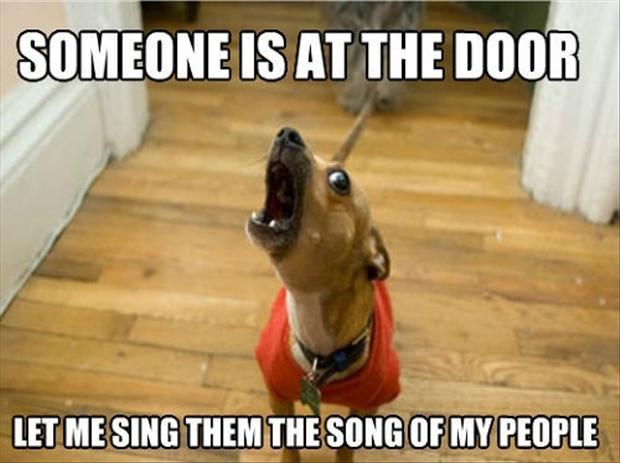 funny memes let me sing you the song of my people (3)