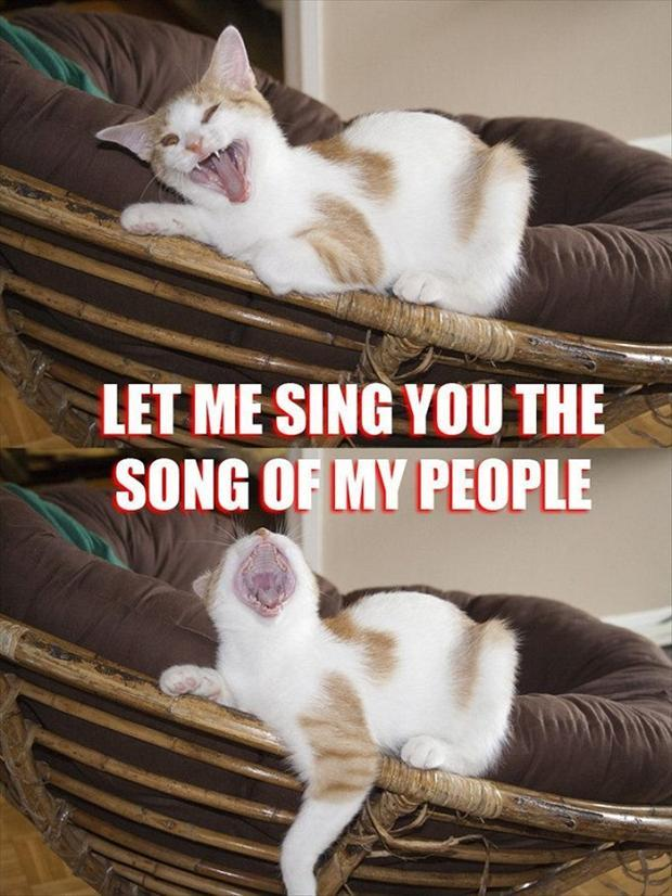 funny memes let me sing you the song of my people (4)