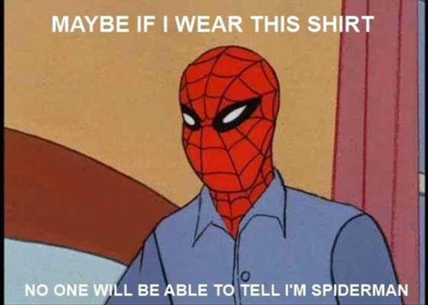funny spiderman meme pictures (18)
