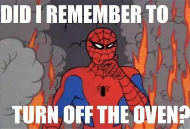 funny spiderman meme pictures (2)