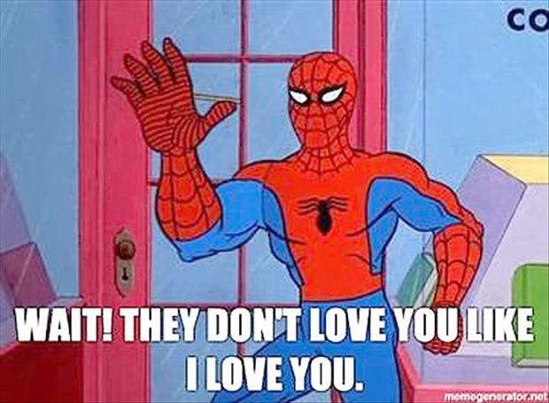 funny spiderman meme pictures (6)
