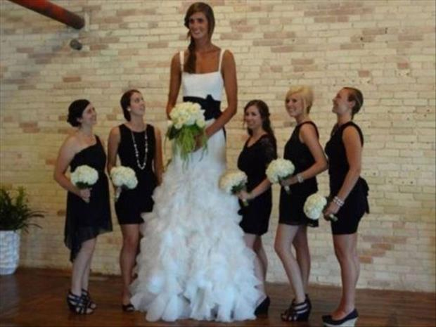 funny wedding pictures (14)