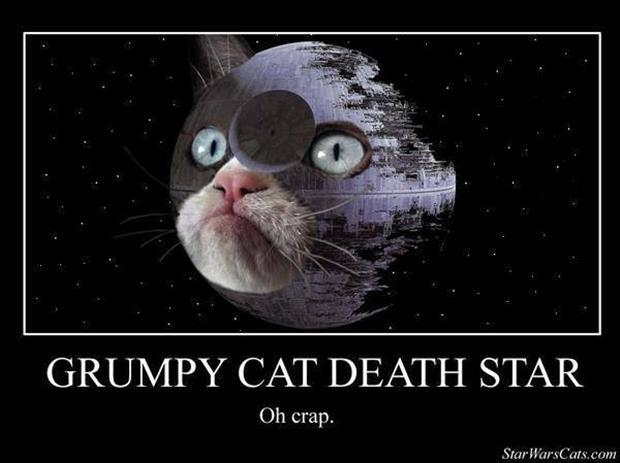 grump cat star wars