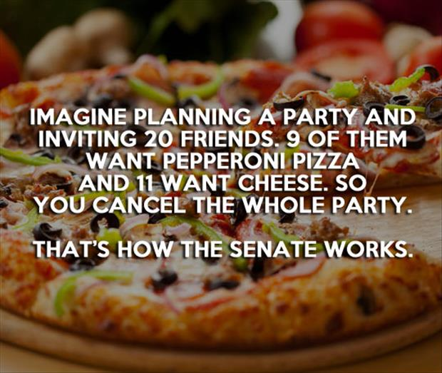 how does the senate work