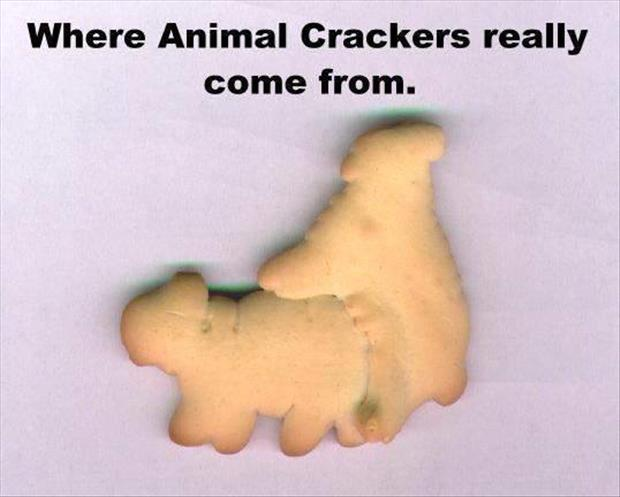 how to make animal crackers