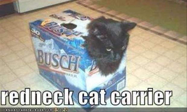 redneck cat carrier