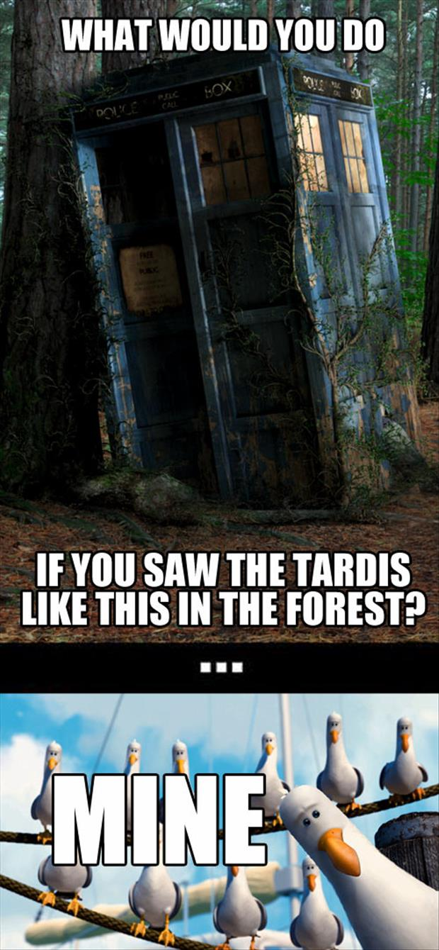 tardis funny pictures