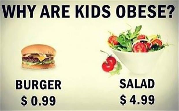 this is why kids are fat