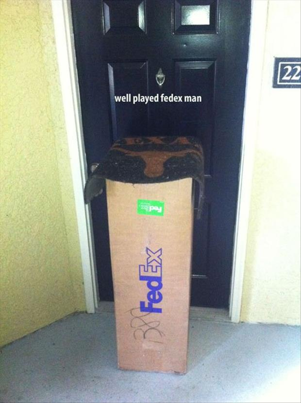 well played fed ex guy
