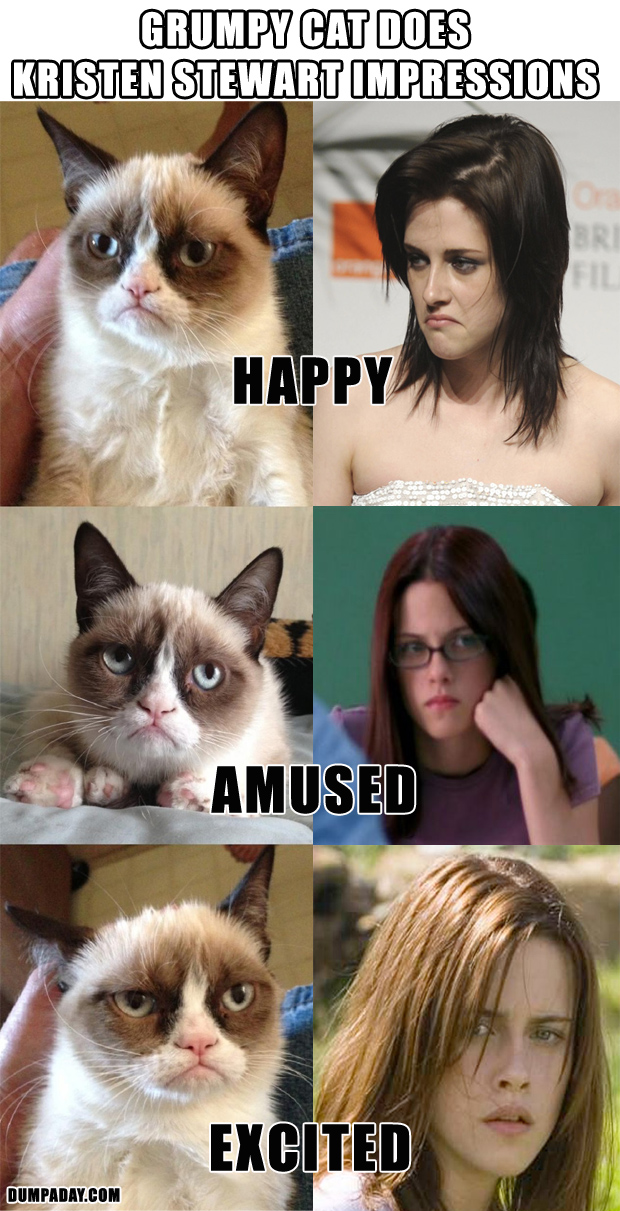 Best-of-2012-pictures-grumpy-cat-funny-kristen-stewart