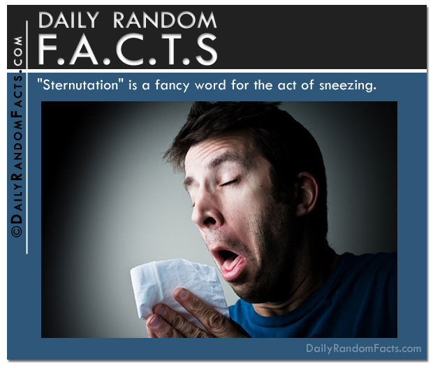 Daily Random Facts- Act of Sneezing