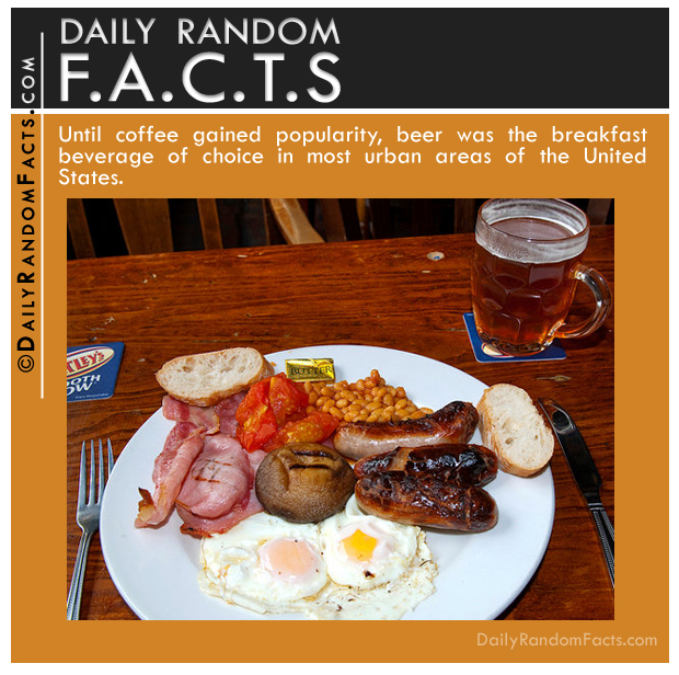 Daily Random Facts- Beer for breakfast