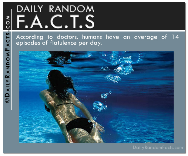 Daily Random Facts- Flatulence