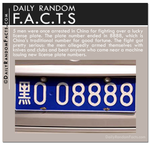 Daily Random Facts- Lucky License Plate