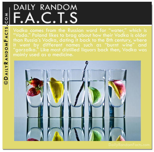 Daily Random Facts- Vodka