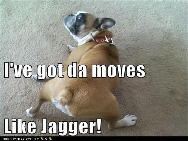 I got moves like jaggar