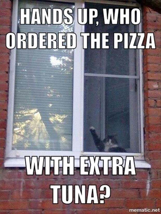 a funny pictures ordering pizza
