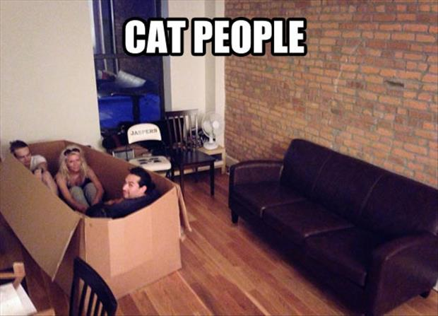 cat people in a box