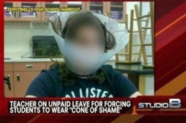 cone of shame funny pictures
