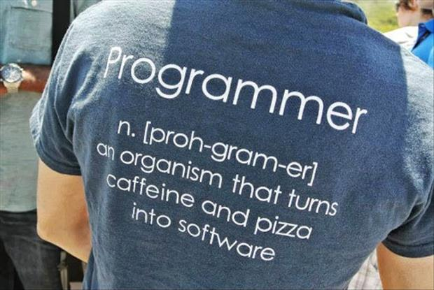 definition of a programer