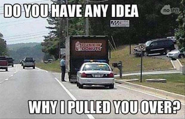 do you have any idea why I pulled you over
