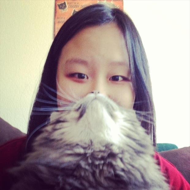 funny cat beard pictures, dumpaday (11)