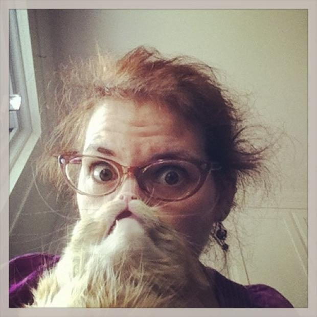 funny cat beard pictures, dumpaday (2)