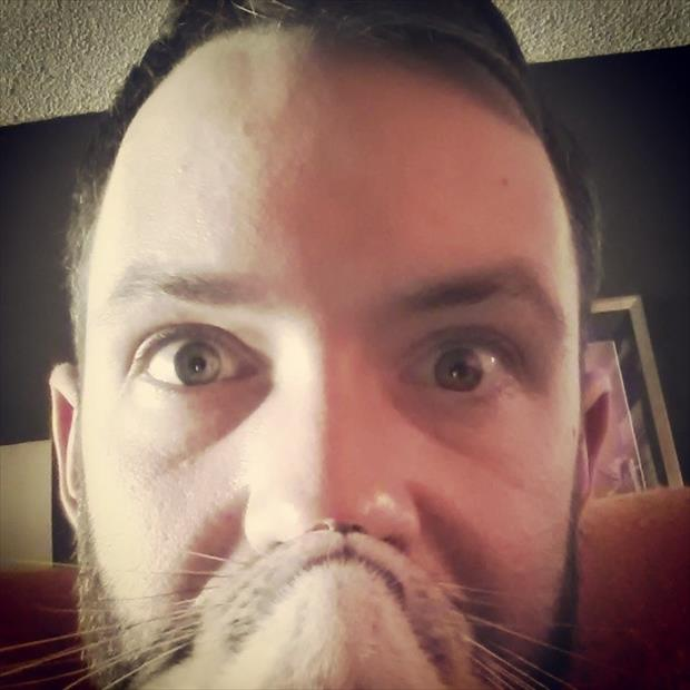 funny cat beard pictures, dumpaday (22)