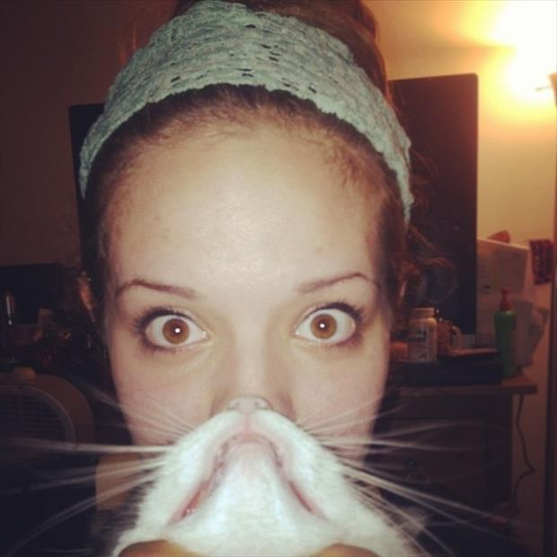 funny cat beard pictures, dumpaday (3)