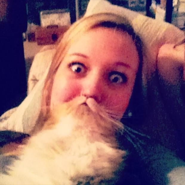 funny cat beard pictures, dumpaday (7)
