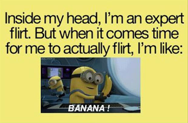 funny minion pictures, dumpaday (1)