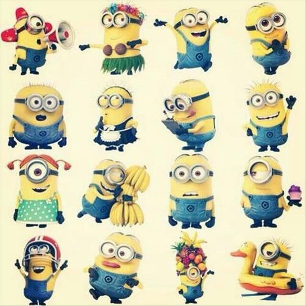 funny minion pictures, dumpaday (13)