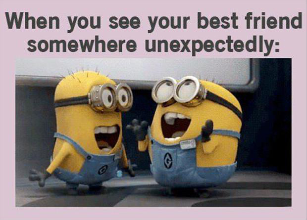 funny minion pictures, dumpaday (18)
