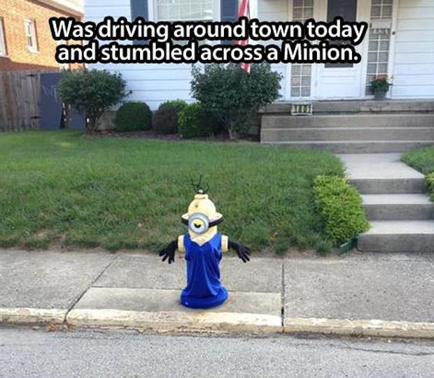 funny minion pictures, dumpaday (4)