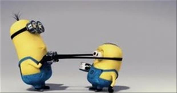 funny minion pictures, dumpaday (7)
