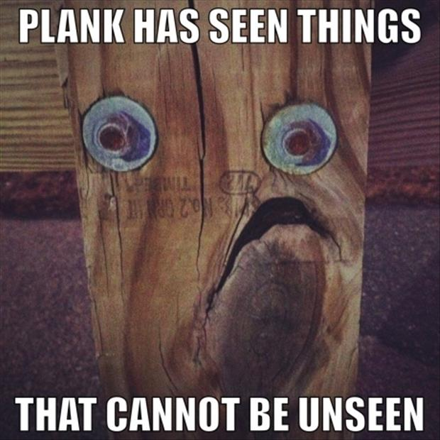 funny pictures wood