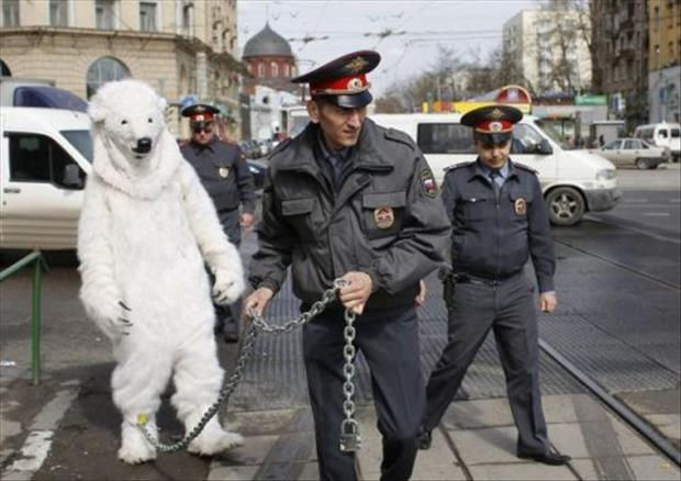 funny russia pictures wtf images, dumpaday (4)