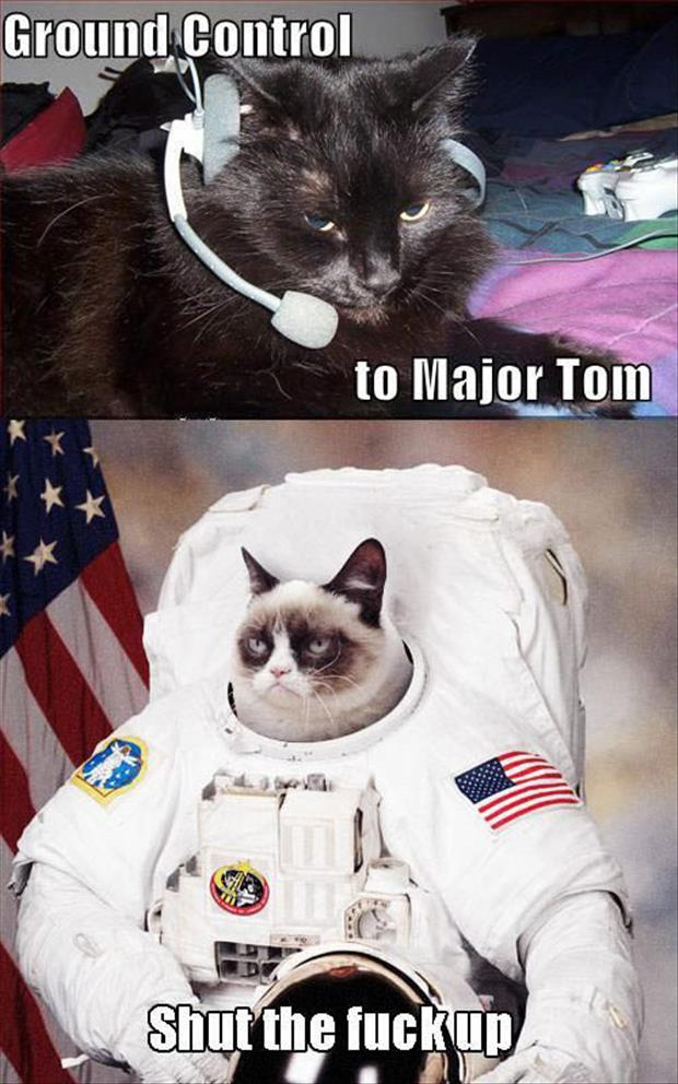 ground control space grumpy cat