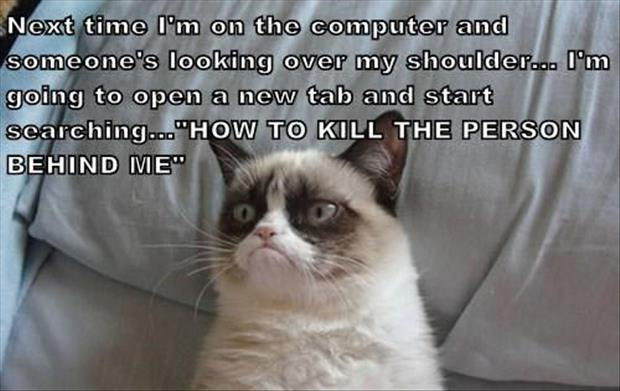 grumpy cat funny pictures