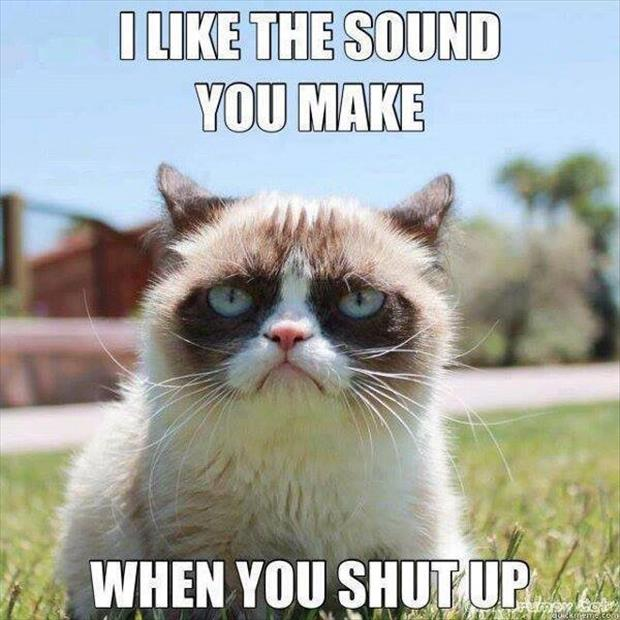 grumpy cat likes the sound you make when you shut up